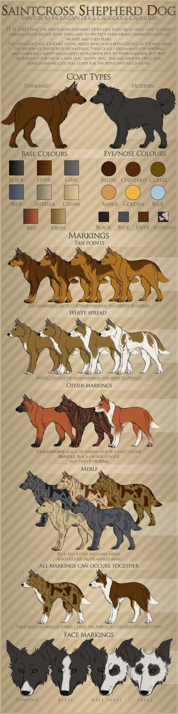 Saintcross Shepherd Dog breedsheet by samuraj-SZADZIK