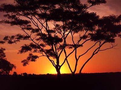 Sunset at Bangladesh by BayofBangle