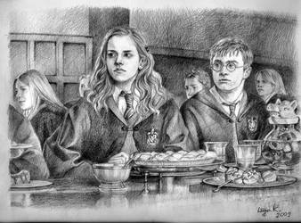 Harry and Hermione by LiigaKlavina