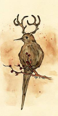 the mysterious deerbird