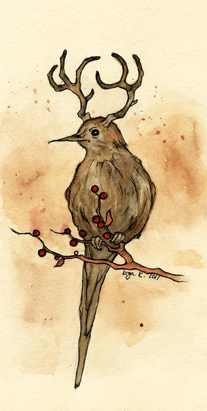 the mysterious deerbird