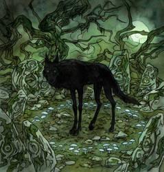 unusual encounter by LiigaKlavina