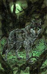 Wolf Stranger 2