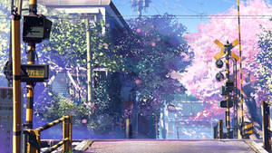 5 Centimeters Per Second Anime 4K Wallpaper