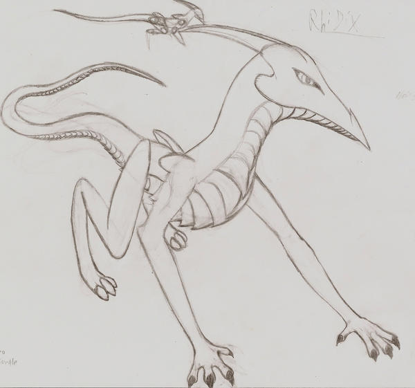 Rhidix by Phoenix52