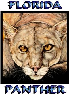 Florida Panther by SAU21866