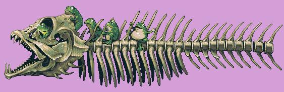 Swampexpress by fool