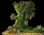Misc tree