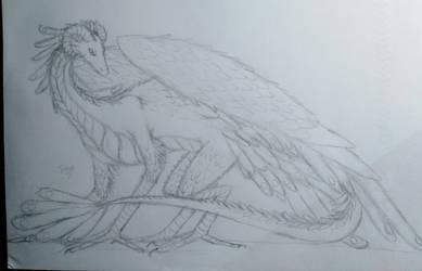 New dragon sketch by T-Shizuru-20