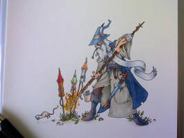 Gandalf, who made such excellent fireworks... by DanielRound