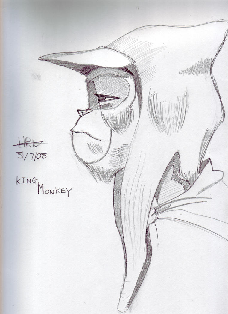 Another Drawing of Monkey King by Hannypea on DeviantArt