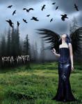 Thy Raven Wings