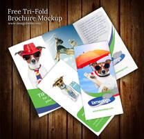 Free Tri Fold Brochure Mockup PSD by Designbolts