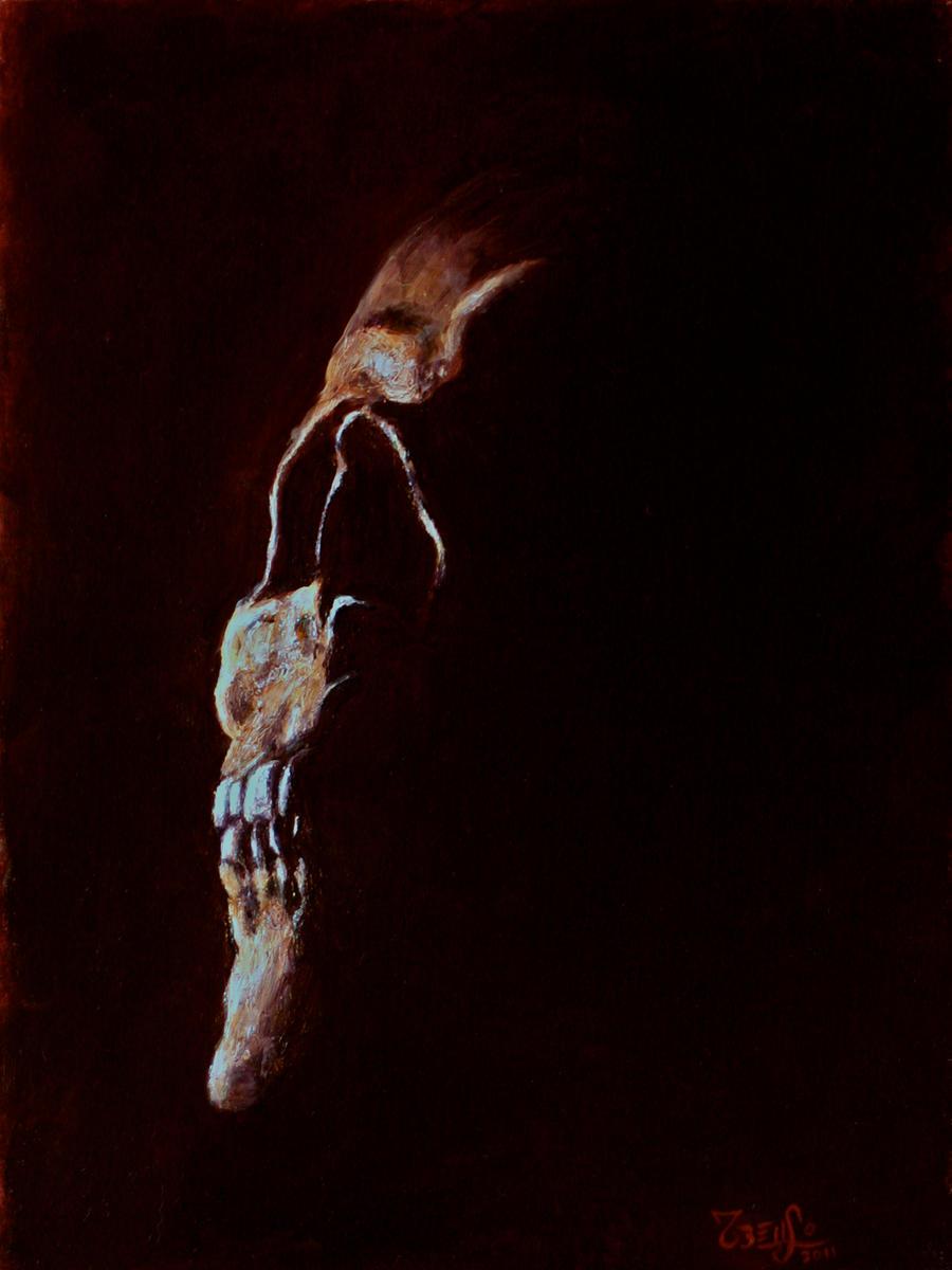 Skull 5 by MesolimbicArt