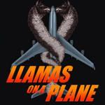 Llamas on a Plane
