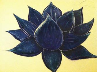 water lotus by BreannahWebb