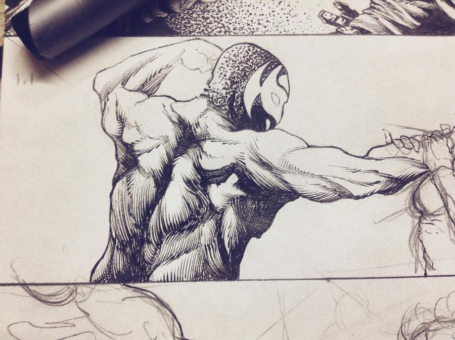 back anatomy by CRUCASE