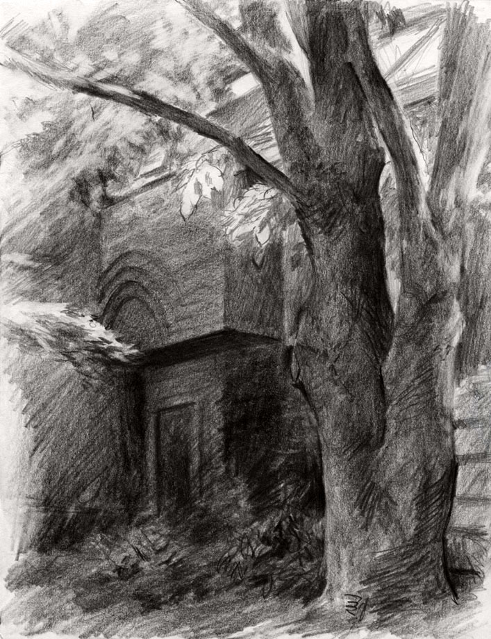 Pencil sketching tree shadow by jerrycai