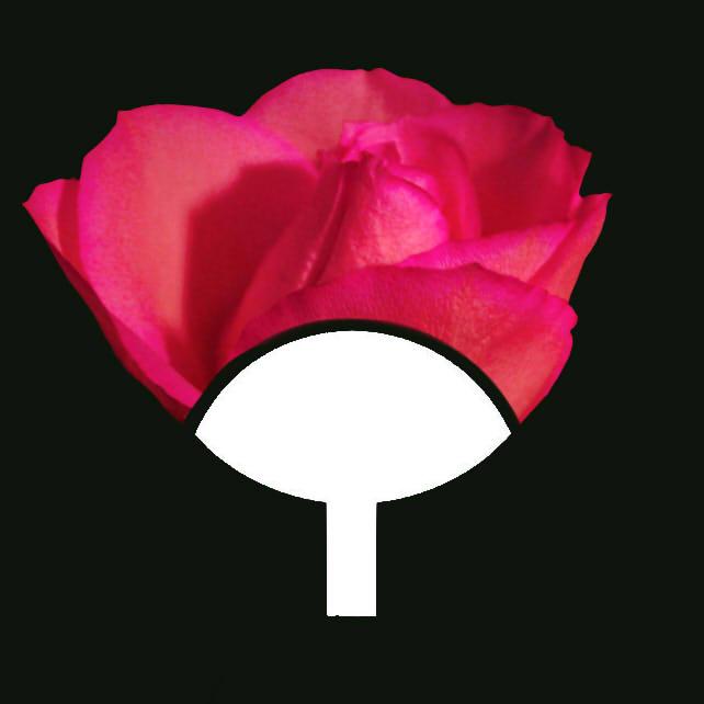 Uchiha Clan Symbol Flower Edit By Xaiyaelyx On Deviantart