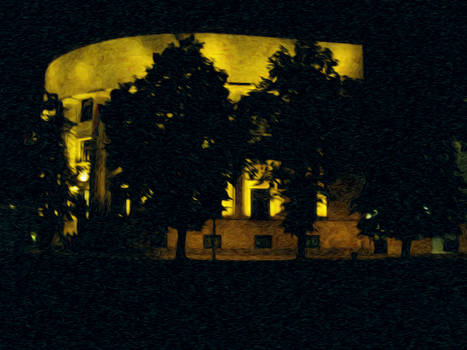President palace at night