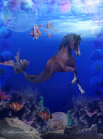 The Real Seahorse by Aizlej