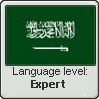 Expert Arabic by Ame-Baki