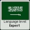Expert Arabic by Ame-Baki