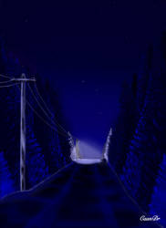 Night road through the winter forest
