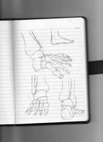 Foot Sketch Cluster 1 by Scott04069418