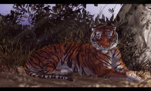 Tiger's piece of Shade by maccarta