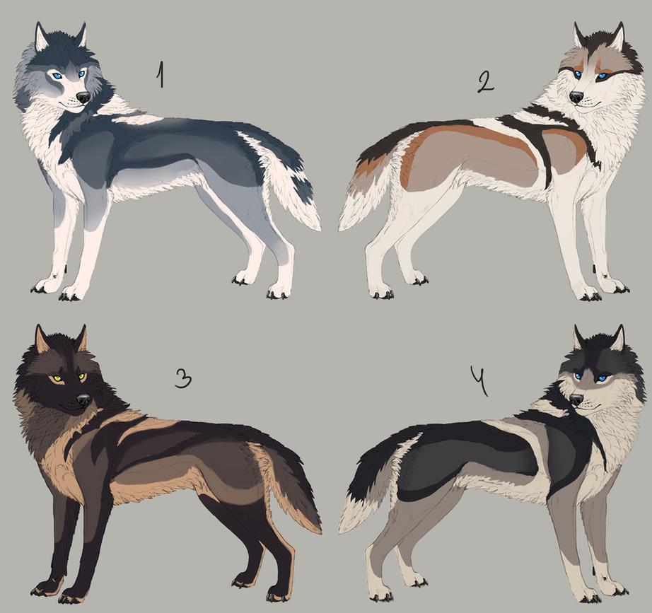 Semi-natural Wolf Adop...