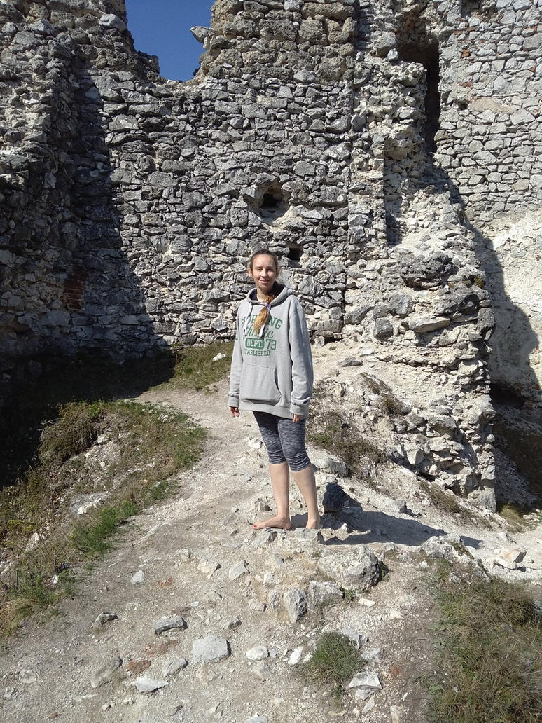 http://pre07.deviantart.net/7b96/th/pre/i/2017/100/0/4/very_hard_terrain_in_tematin_castle_by_barefootersk-db5c6vt.jpg
