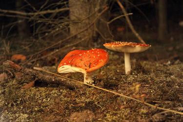 red mushroom by GreenSlOw