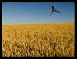 Jump by kelc