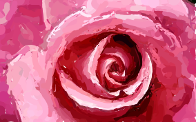 Pink rose painting by wolflover887 on deviantart pink rose painting by wolflover887 mightylinksfo