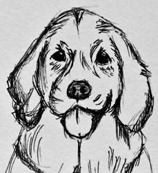 Doggo by makinitOG