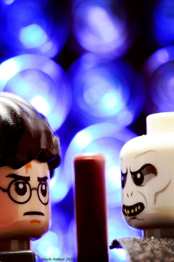 Lego Harry Potter by moviegirl78