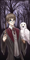 HP - Harry and Hedwig