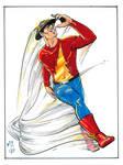 The Flash 012017