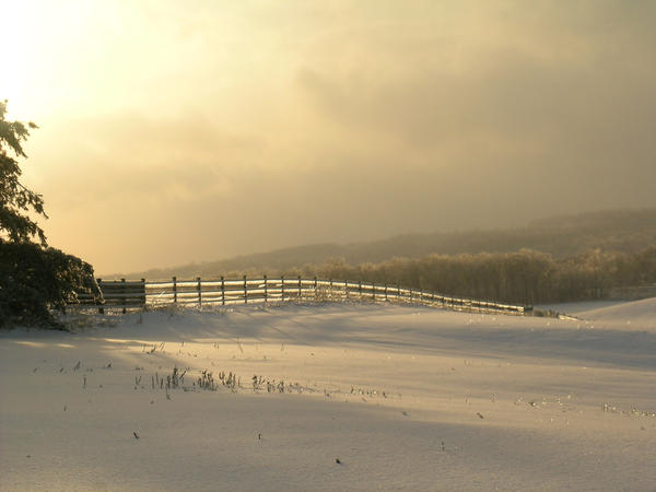 Winter stock by MMistress-Stock