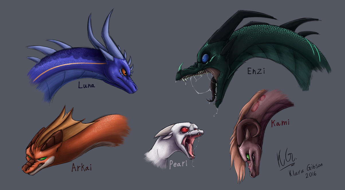 five angry dragon heads by klaragibson on deviantart
