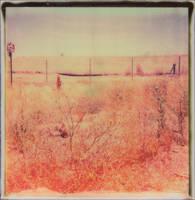 Bone Dry by JillAuville
