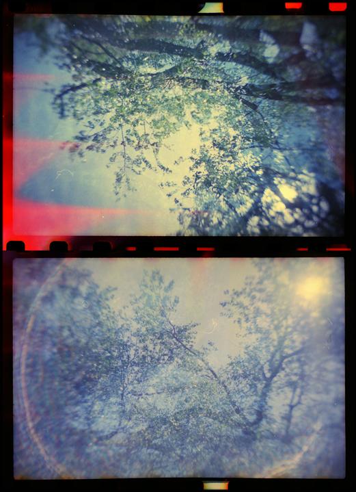 Suns by JillAuville