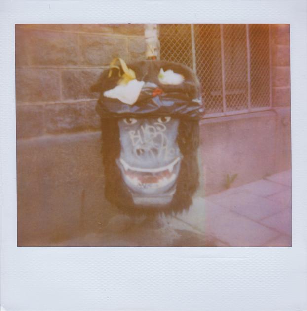 Gorilla Garbage by JillAuville