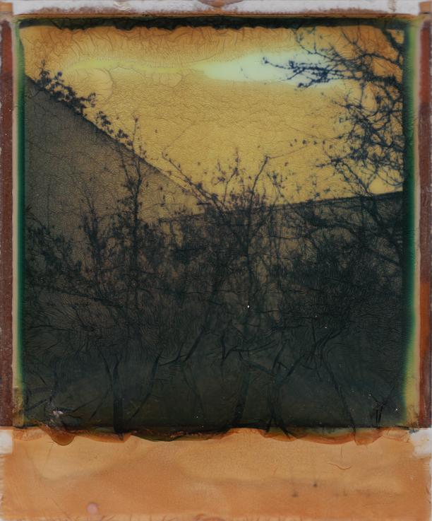 Walled In by JillAuville