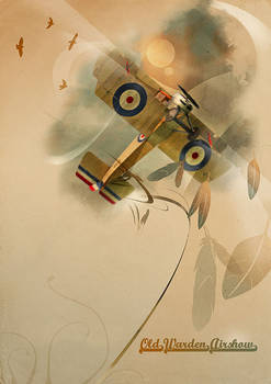 Old Warden Airshow Poster