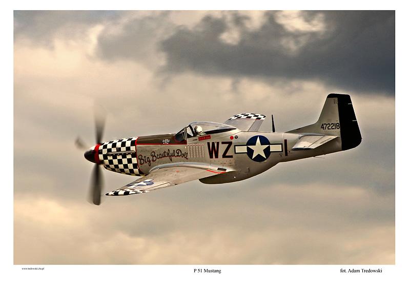 P 51 Mustang Art P 51 Mustang by tredow...