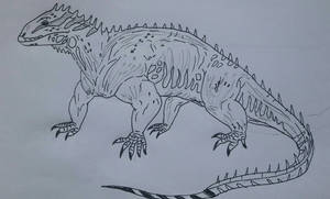 The ancestor of all the lizards of Nazoou islands