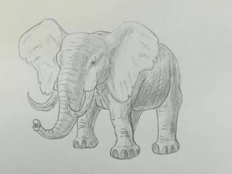 DwidleAnimals- Loxafer the african elephant by RaresAnimals