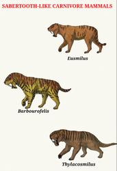 Sabertooth-like Carnivore Mammals by RaresAnimals